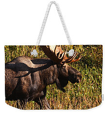 Weekender Tote Bag featuring the photograph On The Move by Doug Lloyd
