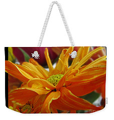 Weekender Tote Bag featuring the photograph Orange Juice Daisy by Debbie Portwood