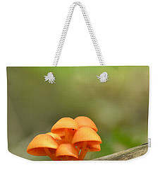 Weekender Tote Bag featuring the photograph Orange Mushrooms by JD Grimes