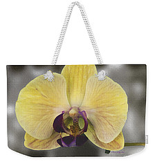 Orchid Study IIi Weekender Tote Bag by Patricia Griffin Brett