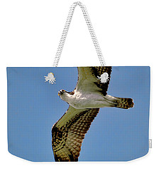 Osprey Above Weekender Tote Bag
