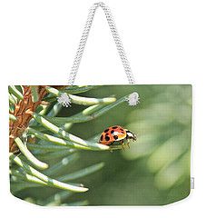 Weekender Tote Bag featuring the photograph Out On A Limb by Penny Meyers