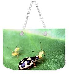 P-14 Lady Beetle Feeding On A Pea Aphid Weekender Tote Bag by Science Source