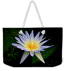 Painted Lily And Pads Weekender Tote Bag by Steve McKinzie