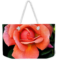 Weekender Tote Bag featuring the photograph Painted Rose by Cindy Manero