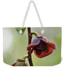 Weekender Tote Bag featuring the photograph Paw-paw Flowers by JD Grimes