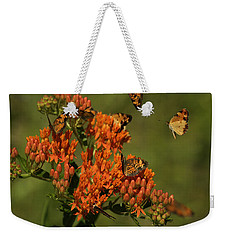 Weekender Tote Bag featuring the photograph Pearly Crescentpot Butterflies Landing On Butterfly Milkweed by Daniel Reed