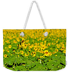 Weekender Tote Bag featuring the photograph Peeking Above  Sea Of Yellow by Colleen Coccia