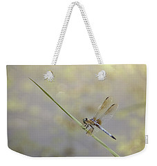Weekender Tote Bag featuring the photograph Perched Dragon In Sepia by JD Grimes
