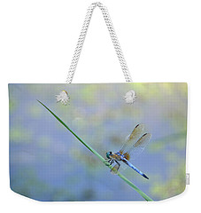 Weekender Tote Bag featuring the photograph Perched Dragon by JD Grimes