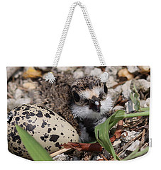 Killdeer Baby - Photo 25 Weekender Tote Bag by Travis Truelove