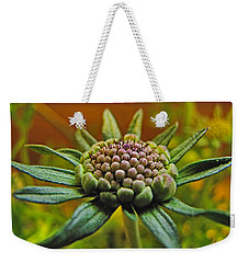 Weekender Tote Bag featuring the photograph Pinchshin Bud by Debbie Portwood