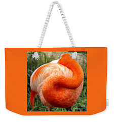 Weekender Tote Bag featuring the photograph Pink Flamingo Sleep by Rebecca Margraf