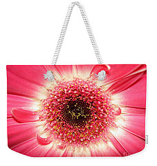 Weekender Tote Bag featuring the photograph Pink Gerbera Daisy Close-up by Kerri Mortenson