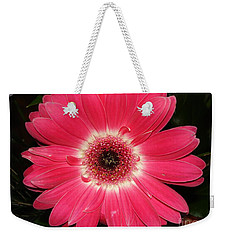 Weekender Tote Bag featuring the photograph Pink Gerbera Daisy by Kerri Mortenson