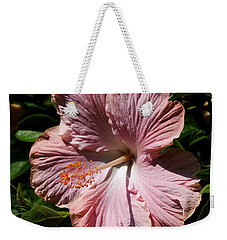Weekender Tote Bag featuring the photograph Pink Hibiscus by Karen Harrison
