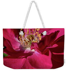 Weekender Tote Bag featuring the photograph Pink Of Rose by Joy Watson