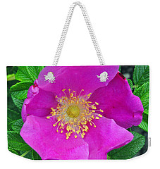 Weekender Tote Bag featuring the photograph Pink Portulaca by Tikvah's Hope