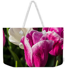 Weekender Tote Bag featuring the photograph Pink Tulip by David Gleeson