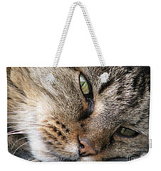 Weekender Tote Bag featuring the photograph Pondering by Rory Sagner