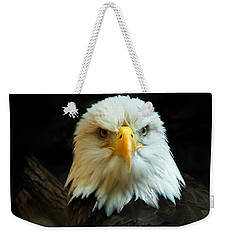 Weekender Tote Bag featuring the photograph Portrait American Bald Eagle by Randall Branham