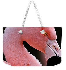 Portrait Of A Flamingo Weekender Tote Bag