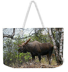 Weekender Tote Bag featuring the photograph Poser by Doug Lloyd