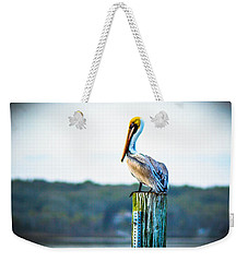 Weekender Tote Bag featuring the photograph Posing Pelican by Shannon Harrington