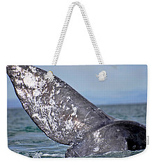 Weekender Tote Bag featuring the photograph Powerful Fluke by Don Schwartz