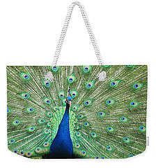Weekender Tote Bag featuring the photograph Proud Peacock by Bonnie Muir