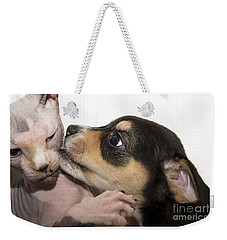 Puppy Whispering Sweet Nothings To Cat Weekender Tote Bag
