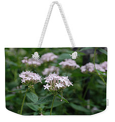 Weekender Tote Bag featuring the photograph Purple Flower by Jennifer Ancker