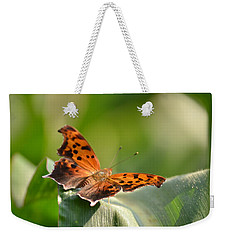 Weekender Tote Bag featuring the photograph Question Mark Butterfly by JD Grimes