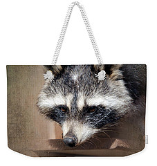 Raccoon 3 Weekender Tote Bag by Betty LaRue