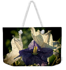Weekender Tote Bag featuring the photograph Radiance by Steven Sparks
