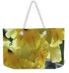 Weekender Tote Bag featuring the photograph Radiance by Thomas Woolworth
