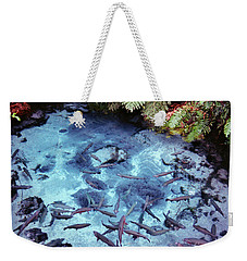 Weekender Tote Bag featuring the photograph Rainbow Springs by Mark Dodd