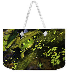 Rana Clamitans Or Green Frog Weekender Tote Bag