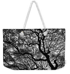Reaching To The Heavens Weekender Tote Bag