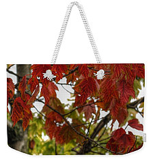 Weekender Tote Bag featuring the photograph Red And Green Prior X-mas by Michael Frank Jr