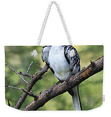 Red-billed Hornbill Weekender Tote Bag by Tony Beck