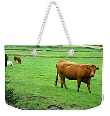 Weekender Tote Bag featuring the photograph Red Cow by Charlie and Norma Brock