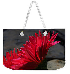 Red English Daisy Weekender Tote Bag by Joe Schofield
