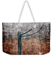 Weekender Tote Bag featuring the photograph Red Fox Under Tree by Dan Friend