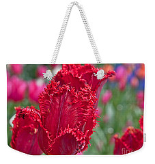 Red Fringed Tulip Flower Macro Art Prints Weekender Tote Bag