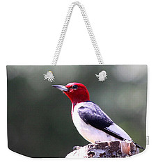 Red-headed Woodpecker - Statue Weekender Tote Bag