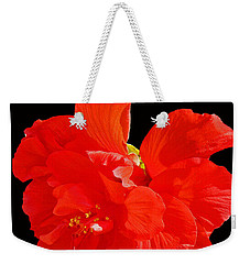 Weekender Tote Bag featuring the photograph Red Hibiscus by Cindy Manero