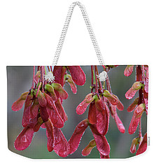 Red Maple Keys With Raindrops Weekender Tote Bag