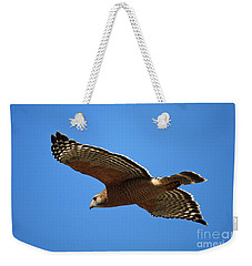 Red Shouldered Hawk In Flight Weekender Tote Bag