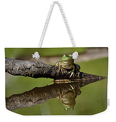 Reflecktafrog Weekender Tote Bag